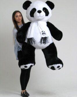 Панда 180